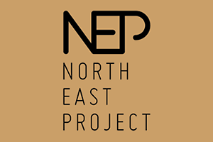 nep-north-east-project
